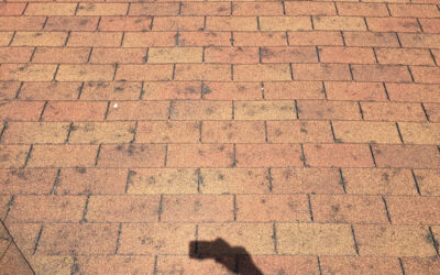 Tips For Pursuing Your Hail Damage Roof Claim